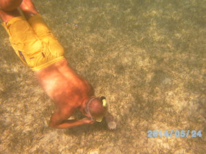 Gary free-diving for sea biscuits