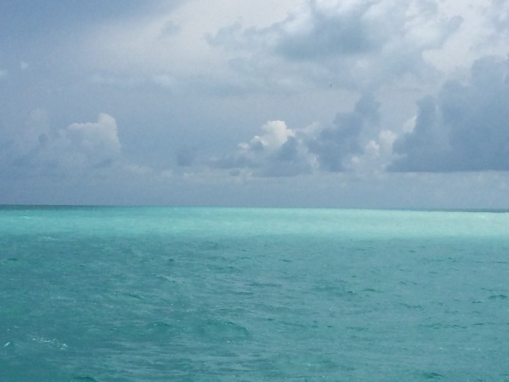 Sailing past a Fish Mud (lighter water), where hundreds of bonefish stir up the sand on the bottom.